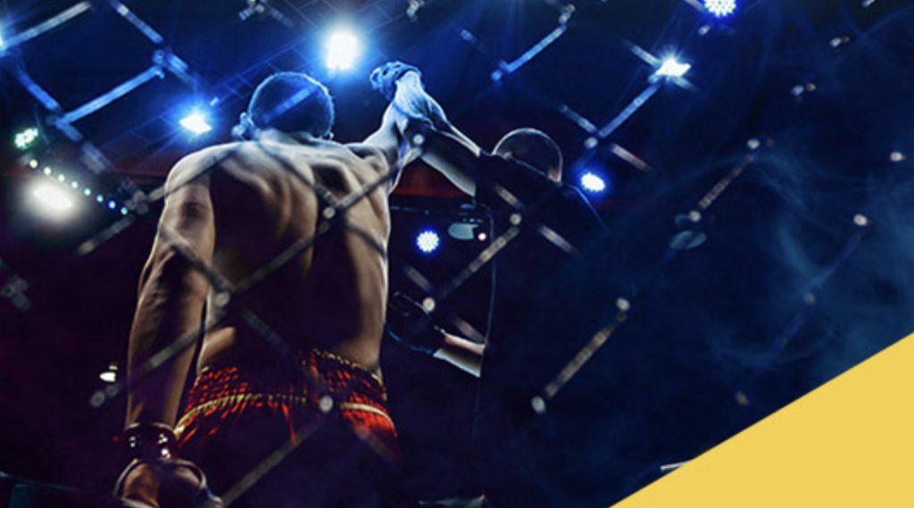 Obstawianie FAME MMA 3 z bonusem 50 PLN w LV BET!